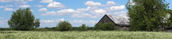 Paysage agricole 600x138